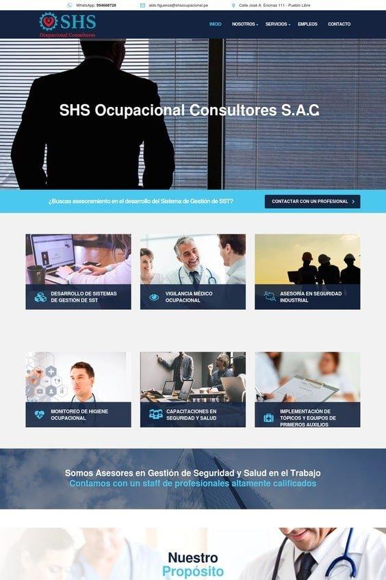 SHS Ocupacional Consultores SAC